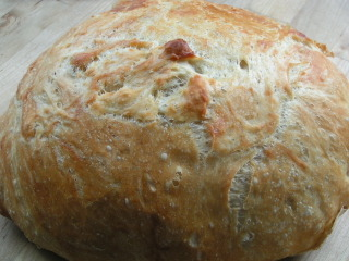 Yum! No Knead Bread!